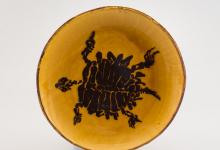 Fossil Slip Turtle