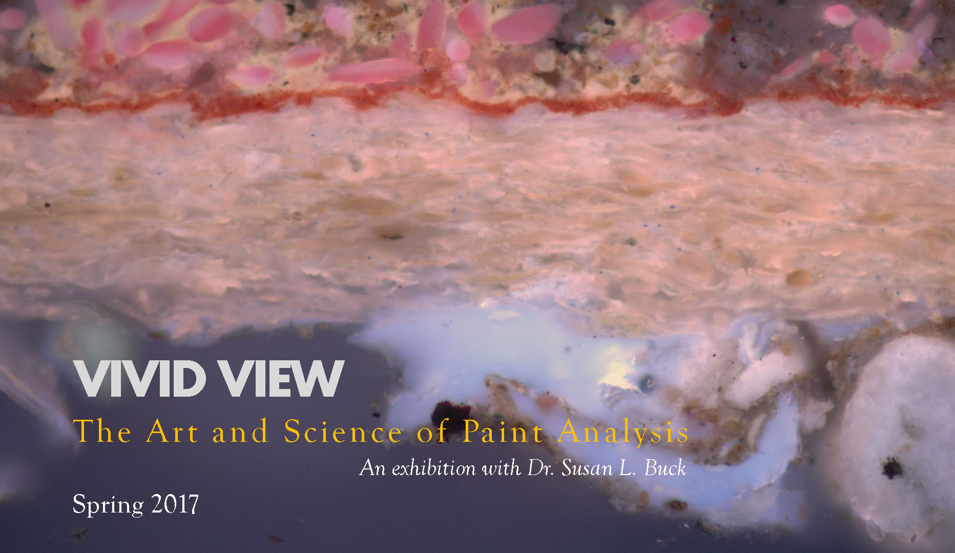 VIVID VIEW: The Art and Science of Paint Analysis - Wilton House Museum